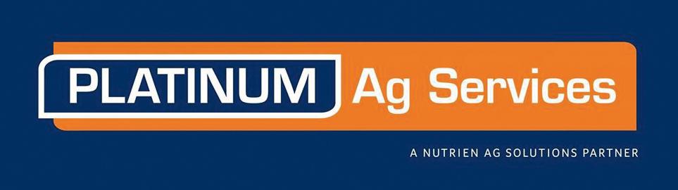 Platinum Ad logo